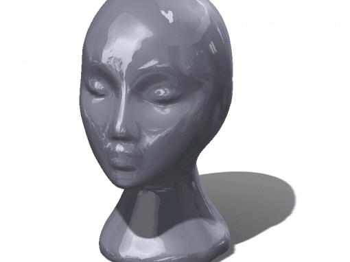 Case Study – Laser Scan – Manikin Head